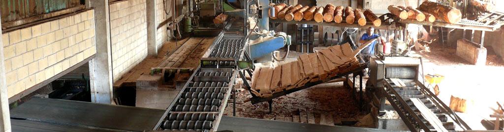 Maderas Murga, empresa familiar que fabrica tablas y listones en Murga (Álava)